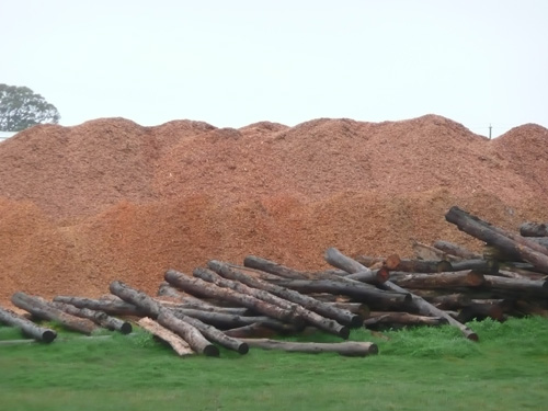 'Forest waste' (foreground) ready for chipping.