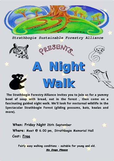 Night Walk flier
