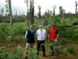 Tony Schneider, Minister Smith and Sim Ayres at a failed VicForests coupe in the  Strathbogie Forest