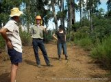 VicForests staff explain their strategy