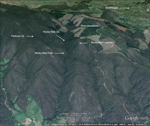 3D satellite image.