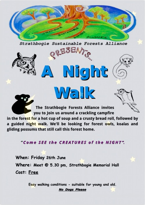 SSFA Lightning Ridge Tk Night Walk Rev A