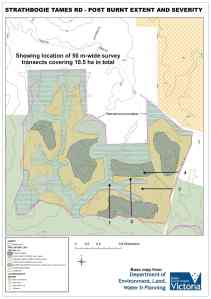 Annotated map of DELWP's assessment of the impact of the planned-burn on the forest.