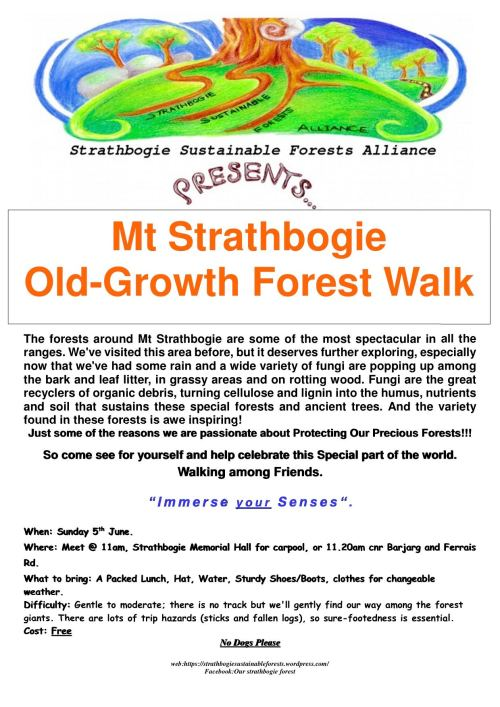 MtStrathbogie Fungi Walk-5 June 2016