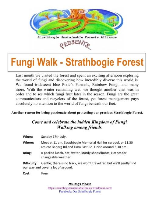 Fungi Walk July 17th 2016
