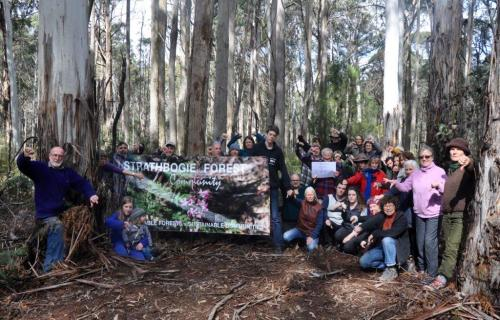 Thumbs-down for VicForests