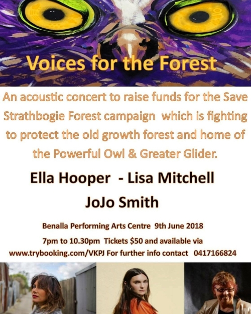 Voices for the Forest concert