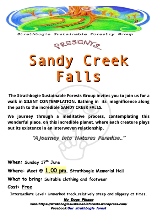 SSFG Sandy Creek Falls 2018 Rev A