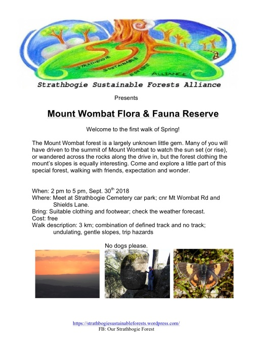 Mount Wombat walk