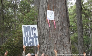 Mr Hat and Community Protection Order.